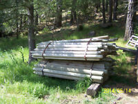 Wood Fence Posts - treated