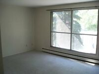 University / Whyte Ave Area Large 1 Bedroom Apartment - August 1