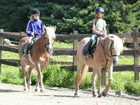 Camp de Jour Équitation pour les enfants de 5 à 14 ans