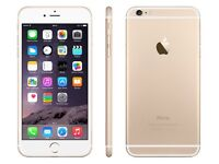 Iphone 6 gold unlocked brand new condition