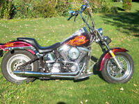 1988 softail custom