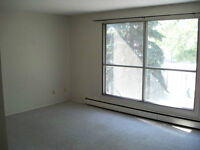 University / Whyte Ave Area Large 1 Bedroom Apartment - June 1