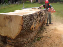 Mobile Saw Milling, Onsite Milling & Chainsaw Milling Millers Point Inner Sydney Preview