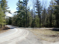 BUILDING LOT JARVIS LAKE RD. $29,900.