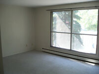University / Whyte ave Large 1 bedroom apartment - August 1