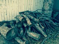 Free Firewood (from a Crabapple tree)