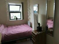 Double room in stunning 2 beds flat in East London