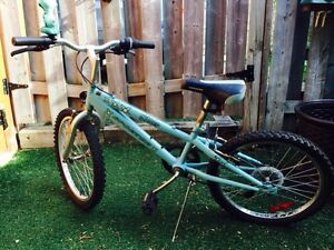 """19"""" kids bike with awesome horn!"""