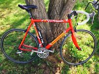 Cannondale Saeco edition