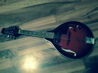 Smoky Mountain mandolin with pickup and case