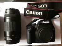 Canon EOS Rebel T1i with 2 lenses