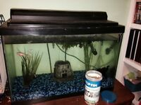 15 galloon aquarium for sale, excellent shape !