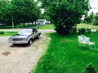 81 MALIBU CLASSIC! CRAGGER RIMS!MUST SEE! NO STORAGE SALE! 2500$