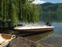 14.5 ft Sunray with 50 hp Merc and trailer