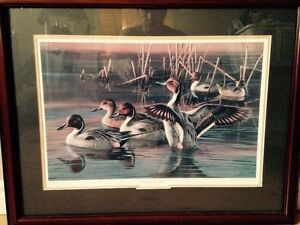 Ducks Unlimited Collection