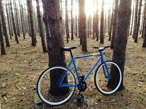 Subrosa fixed gear bike