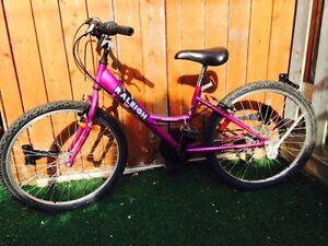 """23"""" 18 speed bike needs a rider this summer"""