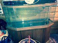 70 litre fish tank