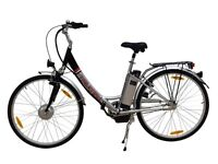 Raleigh Electric Bicycle. Reg.$1599. Now only $699!!!!!!!!!!!