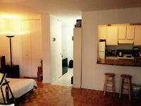 Downtown, 11th flr, 2mins Metro Concordia, McGill HEC 800$