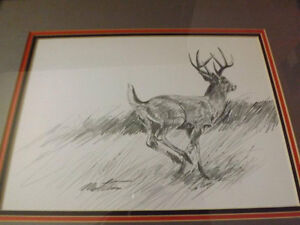 Deer pencil sketch - signed by the artist.