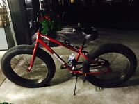 Mongoose fat tire bike