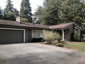 Ancaster Bungalow for rent