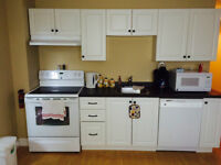 Two Bedroom Fully Furnished Basement Apartment, Clarenville.
