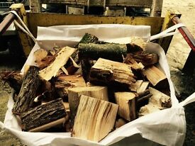 Seasoned firewood logs