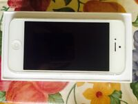 Iphone 5 telus / kodoo super clean
