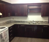 Room for rent in 2 Bedroom Apartment in Lively