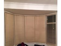 Wooden off white horizontal blinds from b and q