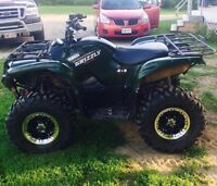 2008 grizzly 700