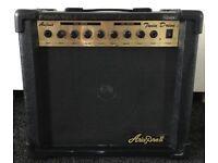 ARIA PRO 2 30 Watt guitar amp