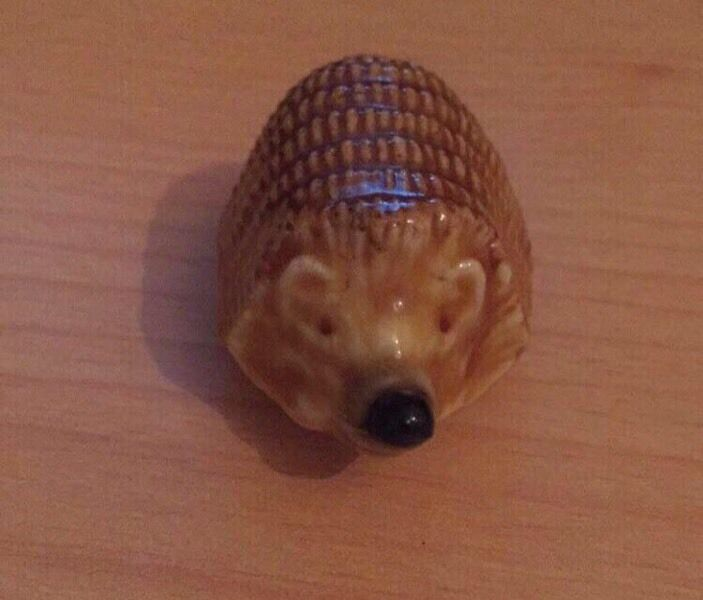 Collectors wade hedgehog