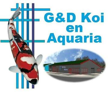 G&D Koi en Aquaria