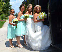 Wedding full day packages for under $1000!