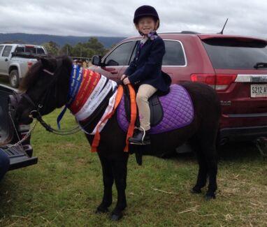Led line pony Port Augusta 5700 Port Augusta City Preview