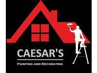 Caesar PAINTER and DECORATOR