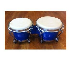 BRAND NEW BONGO FROM $69