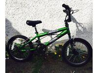 Boys 18'' Avigo bike