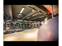 Gym Reception staff wanted in Finchley! Immediate Start