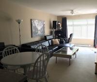 $1325/month | 1 BR | Central Richmond