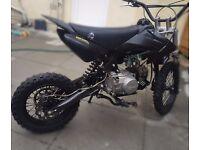 110 stomp wpb pit bike pitbike