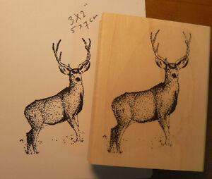 P6 Deer rubber stamp 3x2