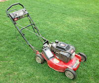 Perfect job for student spending money - cutting lawn weekly