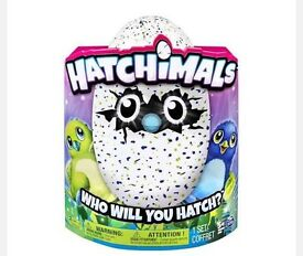 Hatchimals x2