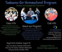 Awesome Homeschool Taekwondo Class for Kids!