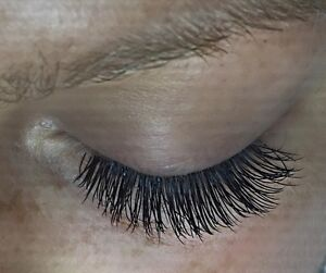 Eyelash Extension Student Special $79  London Ontario image 1