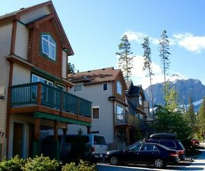 Pet friendly home in Peaks of Grassi available June 1.